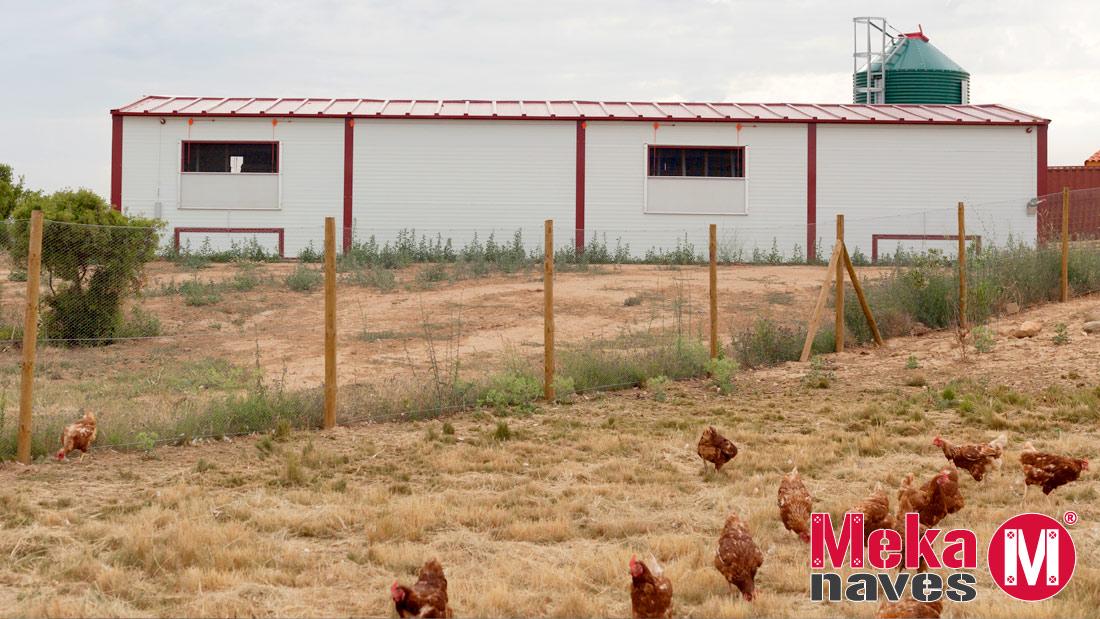 Granja gallinas camperas Epetxa