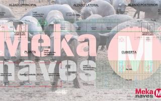 Nave para cerdos en libertad, opción automontaje en Zegama. Mekanaves