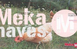 Nave ganadera modular para gallinas ecológicas en Palma de Mallorca, Mekanaves