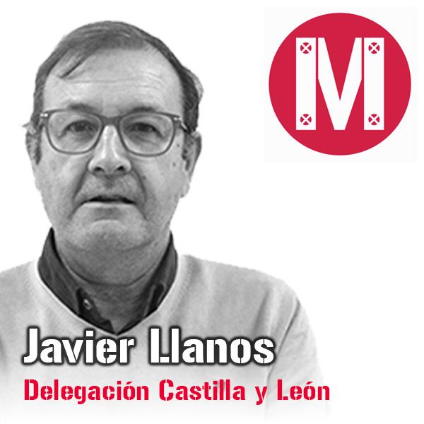 Javier Llanos. Delegación Castilla y León. Mekanaves