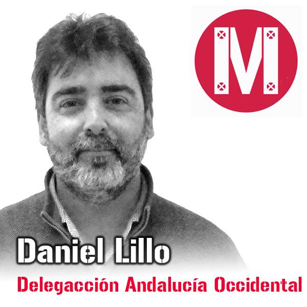 Daniel Lillo, Delegación Andalucía Occidental, Mekanaves