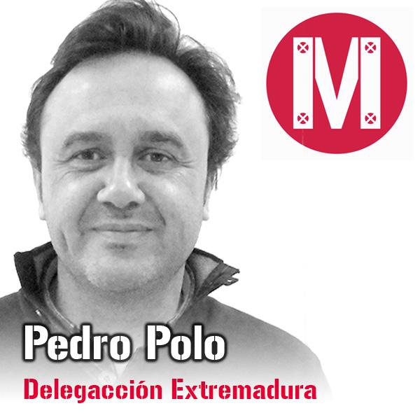 Pedro Polo, Delegación Comercial de Extremadura para Mekanaves, soluciones modulares.
