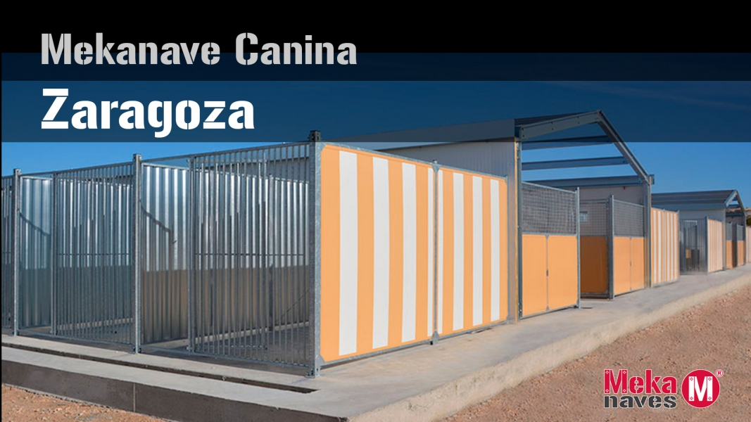 Boxes para perros Zaragoza
