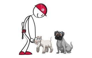 Mekano monta una Residencia Canina