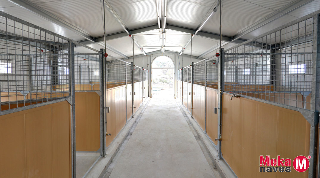 Interior Boxes Centro Canino