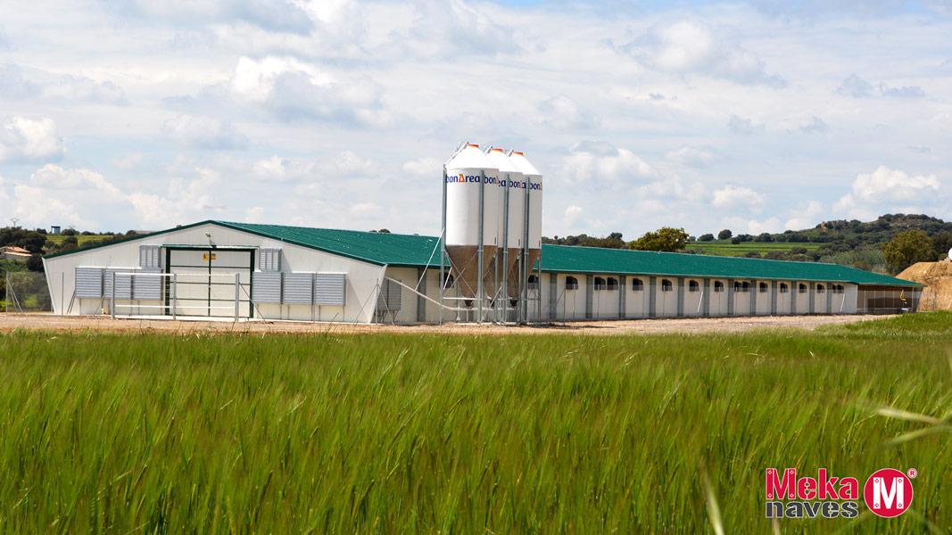 Nave prefabricada para granja de pollos