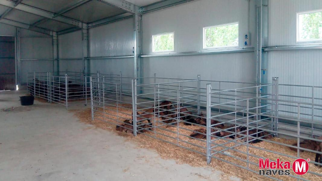 Nave prefabricada para cabras de leche